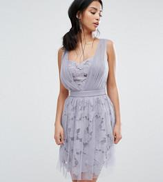 Платье мини с цветочной и тюлевой отделкой Little Mistress Petite - Фиолетовый