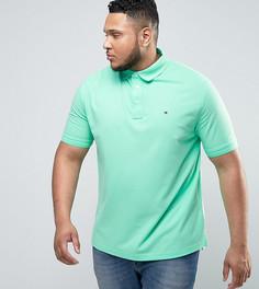 Светло-зеленое поло из ткани пике с флажком Tommy Hilfiger PLUS Luxury - Зеленый