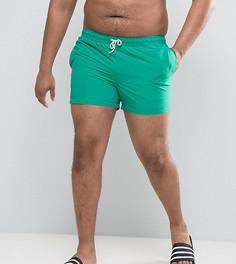 Короткие зеленые шорты для плавания ASOS PLUS - Зеленый
