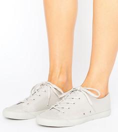 Кроссовки на шнуровке ASOS DAISY CHAIN - Серый