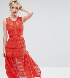 Кружевное короткое приталенное платье для выпускного True Decadence Petite - Красный
