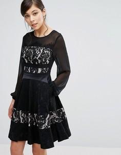 Короткое приталенное платье с кружевом Coast Delphina - Черный