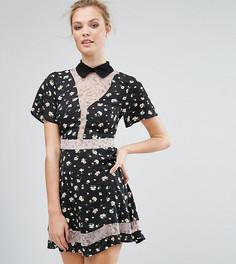 Короткое приталенное платье с принтом Fashion Union Tall - Мульти
