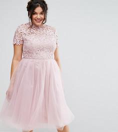 Платье миди с кружевным лифом Chi Chi London Plus - Фиолетовый