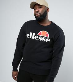 Свитшот с классическим логотипом Ellesse PLUS - Черный