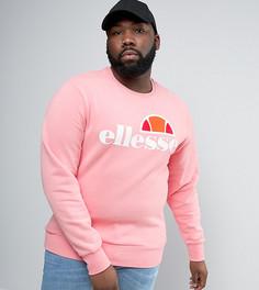 Свитшот с классическим логотипом Ellesse PLUS - Розовый