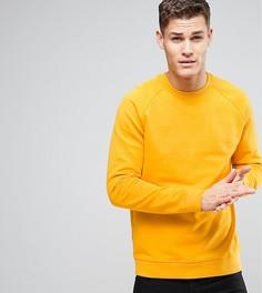 Желтый свитшот ASOS TALL - Желтый