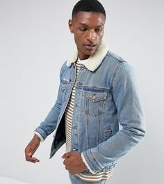 Синяя выбеленная джинсовая куртка с воротником борг ASOS TALL - Синий
