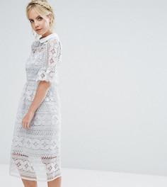 Кружевное приталенное платье с расклешенными рукавами True Decadence Petite - Синий