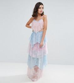 Кружевное платье макси True Decadence Petite - Мульти