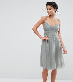 Приталенное платье для выпускного из тюля Little Mistress Petite - Зеленый