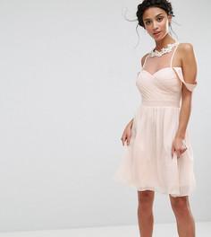 Платье мини с открытыми плечами, плиссированным лифом и кружевной аппликацией Little Mistress Petite - Розовый