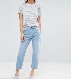 Светлые прямые джинсы ASOS PETITE FLORENCE Authentic Cambridge - Синий