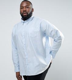 Голубая оксфордская рубашка с длинными рукавами Jacamo PLUS - Синий