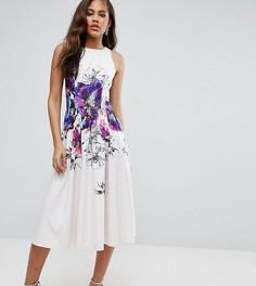 Приталенное платье миди для выпускного с цветочным принтом Little Mistress Tall - Мульти