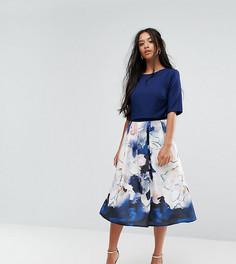 Короткое приталенное платье с короткими рукавами и принтом на юбке Little Mistress Petite - Мульти