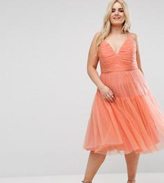 Платье миди для выпускного из тюля ASOS CURVE - Оранжевый