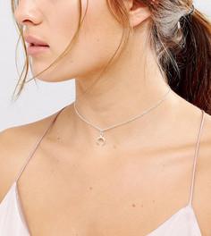 Серебряное ожерелье-чокер с подвеской в виде полумесяца Dogeared - Серебряный