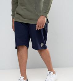 Трикотажные спортивные шорты Loyalty and Faith PLUS - Темно-синий