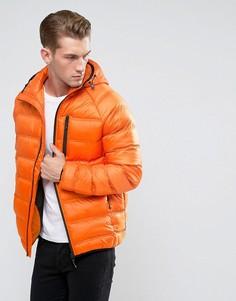 Легкая дутая куртка с капюшоном Bellfield - Оранжевый