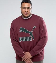 Красный свитшот в винтажном стиле с логотипом Puma PLUS эксклюзивно для ASOS - Красный