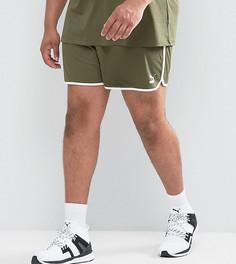 Зеленые сетчатые шорты в стиле ретро Puma PLUS эксклюзивно для ASOS - Зеленый