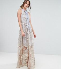 Платье макси с вышивкой True Decadence Tall - Мульти