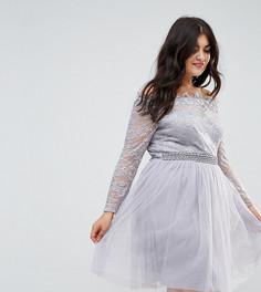 Кружевное короткое приталенное платье с открытыми плечами и юбкой из тюля Little Mistress Plus - Серый