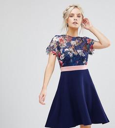Платье для выпускного с цветочным кружевом Paper Dolls Petite - Мульти