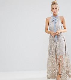 Платье макси со сплошной цветочной вышивкой True Decadence Petite - Мульти