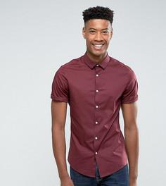 Бордовая облегающая рубашка с короткими рукавами ASOS TALL - Красный