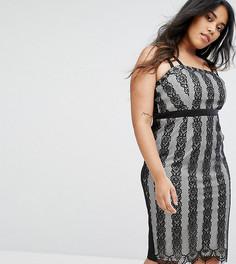 Кружевное платье миди в полоску Little Mistress Plus - Мульти