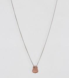 Ожерелье из позолоченного серебра ASOS - Мульти