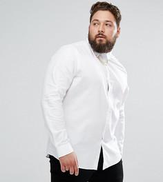 Строгая рубашка зауженного кроя с цепочкой на воротнике Noose & Monkey PLUS - Белый