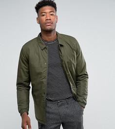 Дутая спортивная куртка Selected Homme TALL - Зеленый
