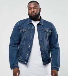 Синяя джинсовая куртка ASOS PLUS - Синий