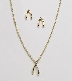 Подарочный набор с ожерельем и серьгами Orelia - Золотой