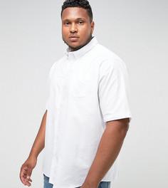Белая оксфордская рубашка с короткими рукавами Jacamo PLUS - Белый
