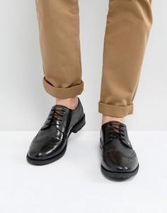 Черные кожаные броги Original Penguin Baxter - Черный
