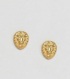 Серьги-гвоздики в виде льва из позолоченного серебра ASOS - Золотой