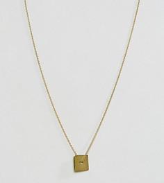 Серебряное позолоченное ожерелье ASOS - Золотой