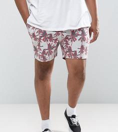 Трикотажные шорты с принтом пальм ASOS PLUS - Серый