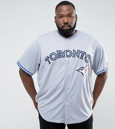 Серый трикотажный бейсбольный топ Majestic PLUS MLB Toronto Blue Jays - Серый