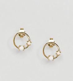 Позолоченные серебряные серьги-гвоздики ASOS - Золотой