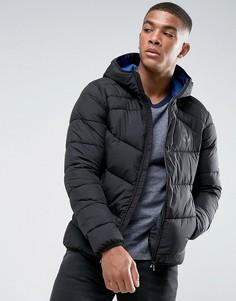 Стеганая куртка с капюшоном Jack & Jones - Черный