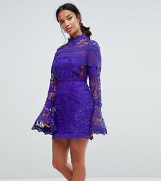 Кружевное платье мини с длинными рукавами клеш ASOS PETITE - Темно-синий