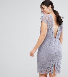 Кружевное платье миди с фактурной отделкой на спине Paper Dolls Plus - Серый