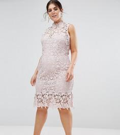 Кружевное платье с высоким вырезом и баской Paper Dolls Plus - Розовый
