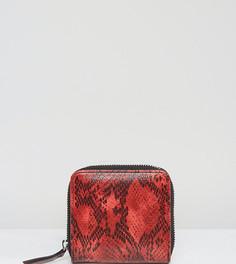 Квадратный кошелек из искусственной змеиной кожи Monki - Красный