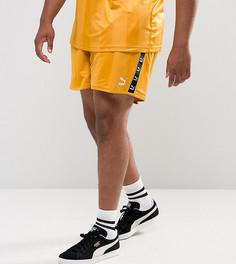 Желтые шорты в стиле ретро Puma PLUS эксклюзивно для ASOS 57658001 - Желтый